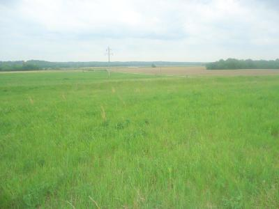 Ray County Residential Lots & Land For Sale: E 180th Street