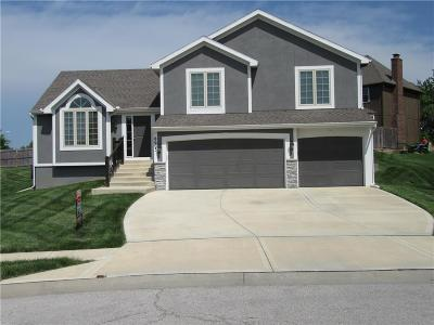 Platte County Single Family Home For Sale: 8603 N Utica Court