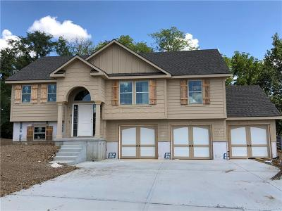 Kearney Single Family Home For Sale: 1102 E 14th Street