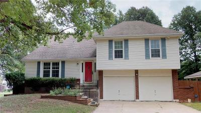 Jackson County, Johnson-KS County Single Family Home For Sale: 6335 Millbrook Avenue