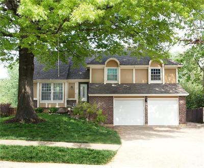 Jackson County, Johnson-KS County Single Family Home For Sale: 14109 S Locust Street