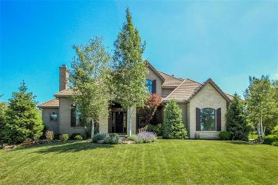 Overland Park Single Family Home For Sale: 11418 W 161st Terrace