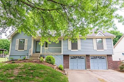 Lee's Summit Single Family Home For Sale: 708 SE Wingate Street