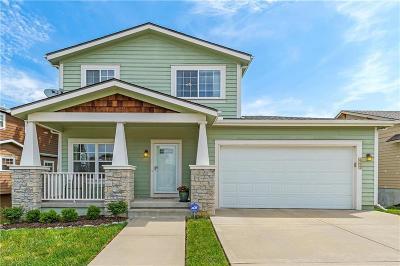 Kansas City Single Family Home For Sale: 3733 S Thompson Street