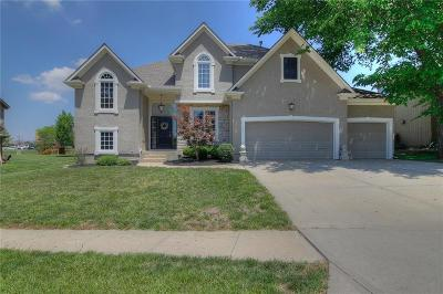 Shawnee Single Family Home For Sale: 21802 W 60 Street
