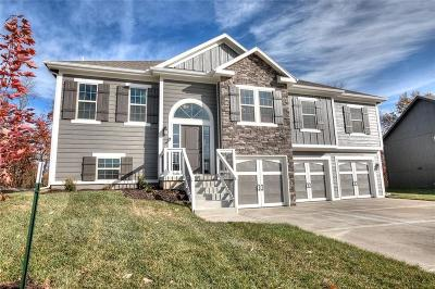 Single Family Home For Sale: 1100 E 14th Street
