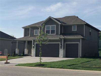 Olathe Single Family Home For Sale: 20897 W 115th Street