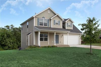 Warrensburg Single Family Home For Sale: 438 Willow Court