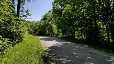 Clinton County Residential Lots & Land Show For Backups: Lot 17 Meadow Lane