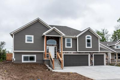 Kansas City Single Family Home For Sale: 11054 Kimball Avenue