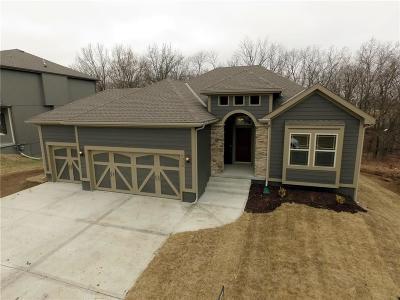 Kearney Single Family Home For Sale: 1316 Melissa Court