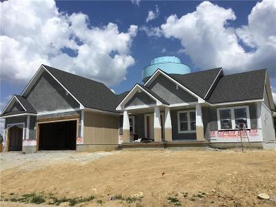 Blue Springs MO Single Family Home For Sale: $379,900