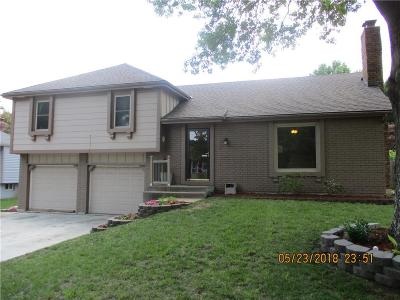 Olathe Single Family Home For Sale: 16621 W 144th Terrace