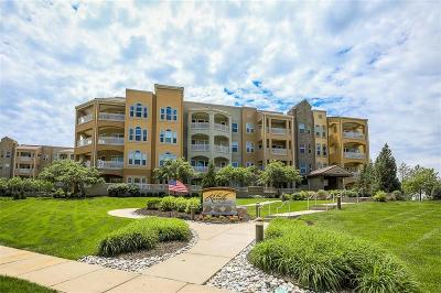Clay County Condo/Townhouse For Sale: 3810 N Mulberry Drive #206