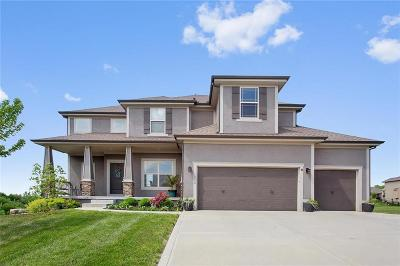 Raymore MO Single Family Home For Sale: $360,000