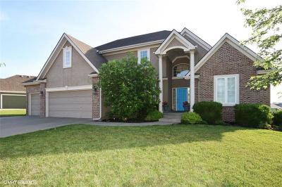 Kansas City MO Single Family Home For Sale: $395,000