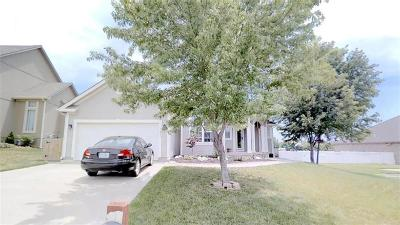 Grain Valley Single Family Home For Sale: 1311 NW Persimmon Drive