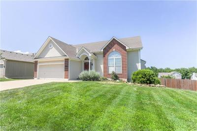 Raymore MO Single Family Home For Sale: $260,000