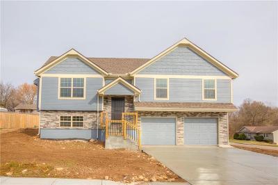 Belton Single Family Home For Sale: 500 W 179th Terrace