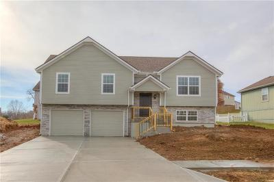 Belton Single Family Home For Sale: 501 W 179th Terrace