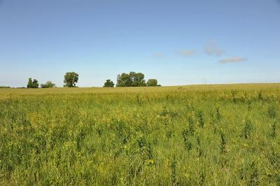 Miami County Residential Lots & Land For Sale: 23700 Switzer Road