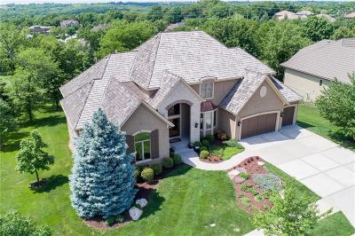 Lenexa Single Family Home For Sale: 9208 Falcon Ridge Drive