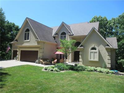 Kansas City Single Family Home For Sale: 9204 N Brooklyn Avenue