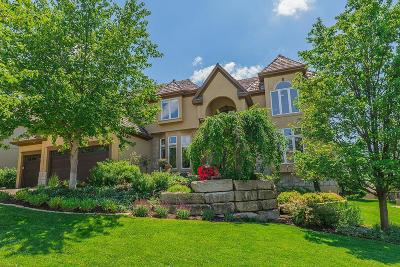Lenexa Single Family Home For Sale: 20807 W 94th Street