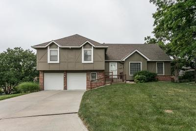 Overland Park Single Family Home For Sale: 12646 W 104th Terrace