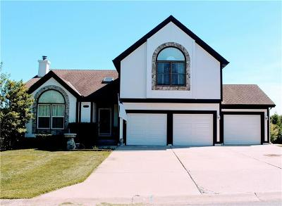 Raintree Lake, Raintree Lake Estates, Raintree Lake- The North Shore, Raintree Villas Single Family Home For Sale: 317 SW Seagull Street
