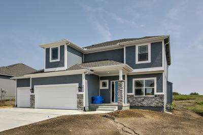 Platte County Single Family Home For Sale: 9409 N Dalton Avenue