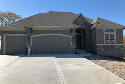 Lenexa Single Family Home For Sale: 8134 Millridge Street