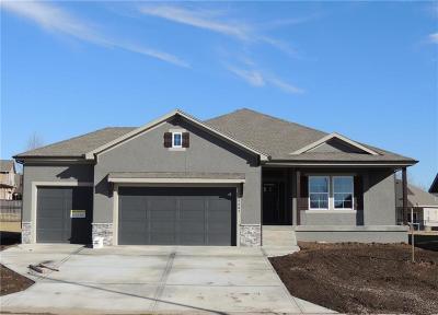 Basehor Single Family Home For Sale: 4807 N 143rd Street