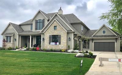 Overland Park Single Family Home For Sale: 17029 Flint Street
