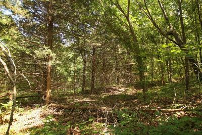 St. Clair County Residential Lots & Land For Sale: C Hwy