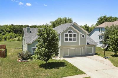 Raymore MO Single Family Home For Sale: $265,000