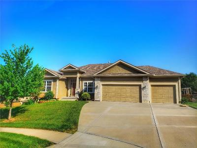 Platte County Single Family Home For Sale: 8514 N Donna Court