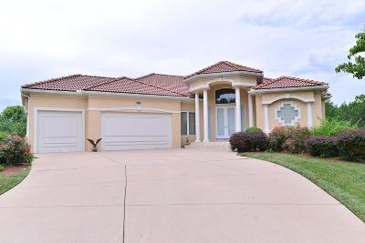 Lee's Summit Single Family Home For Sale: 3008 SW Coachlight Place