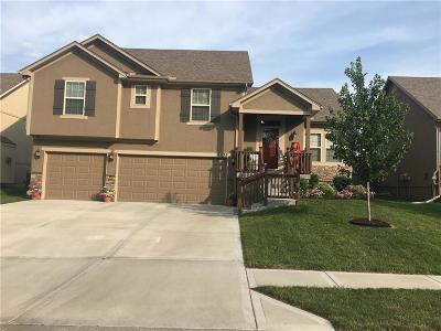 Platte County Single Family Home For Sale: 9635 N Adrian Place