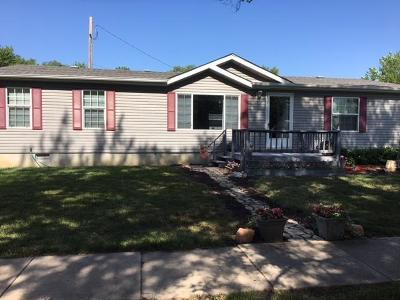 Osage County Single Family Home For Sale: 117 S Delaware Street