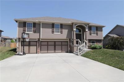 Kearney Single Family Home For Sale: 905 Chisam Road