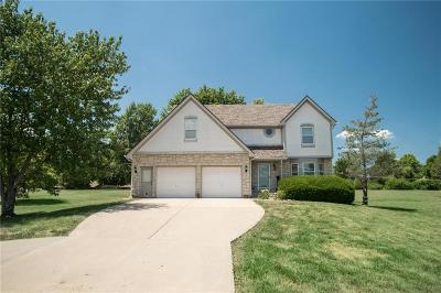 Johnson-KS County Single Family Home For Sale: 8962 Scott Drive