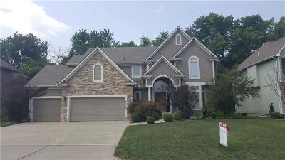 Lee's Summit Single Family Home For Sale: 2541 SW Kristin Drive