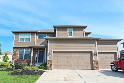 Lansing Single Family Home For Sale: 890 Clearview Drive