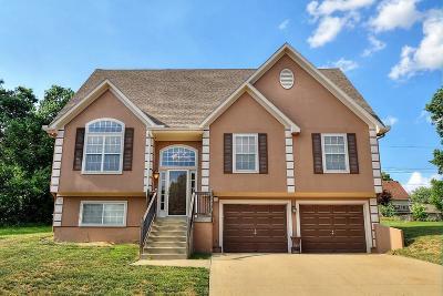 Kansas City Single Family Home For Sale: 13404 E 53rd Terrace