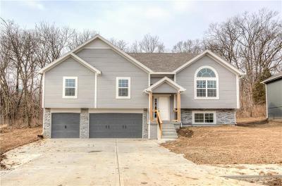 Single Family Home For Sale: 11251 N Bristol Avenue