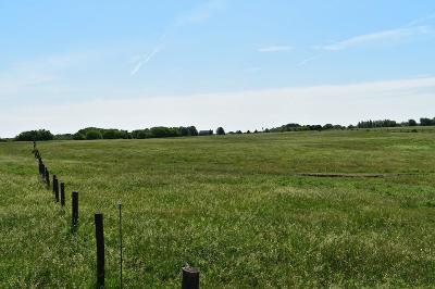 Smithville Residential Lots & Land For Sale: 15802 Short Lane