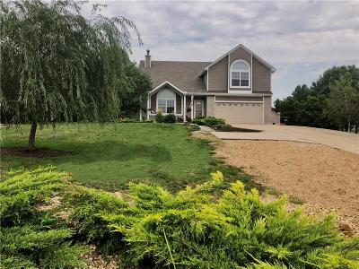 Grain Valley Single Family Home For Sale: 1024 W Ryan Road