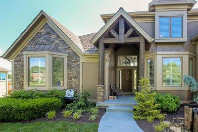 Lee's Summit Single Family Home For Sale: 4409 SW Gull Point Drive