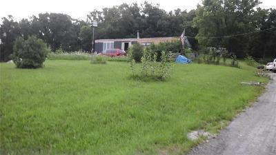 Excelsior Springs Single Family Home For Sale: 30219 NE 142 Terrace